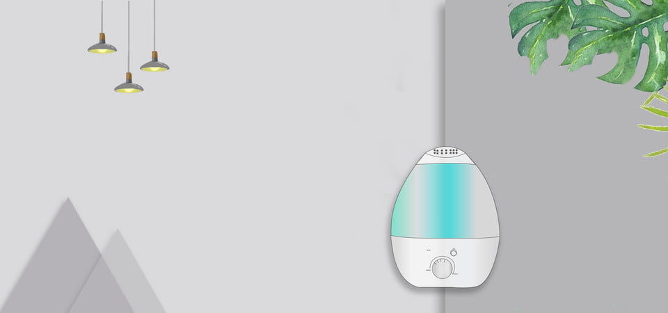 Best Humidifier For Cold Reviews 2020